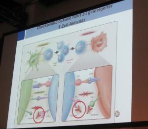 Immuntherapie der reaktivierten T-Zellen